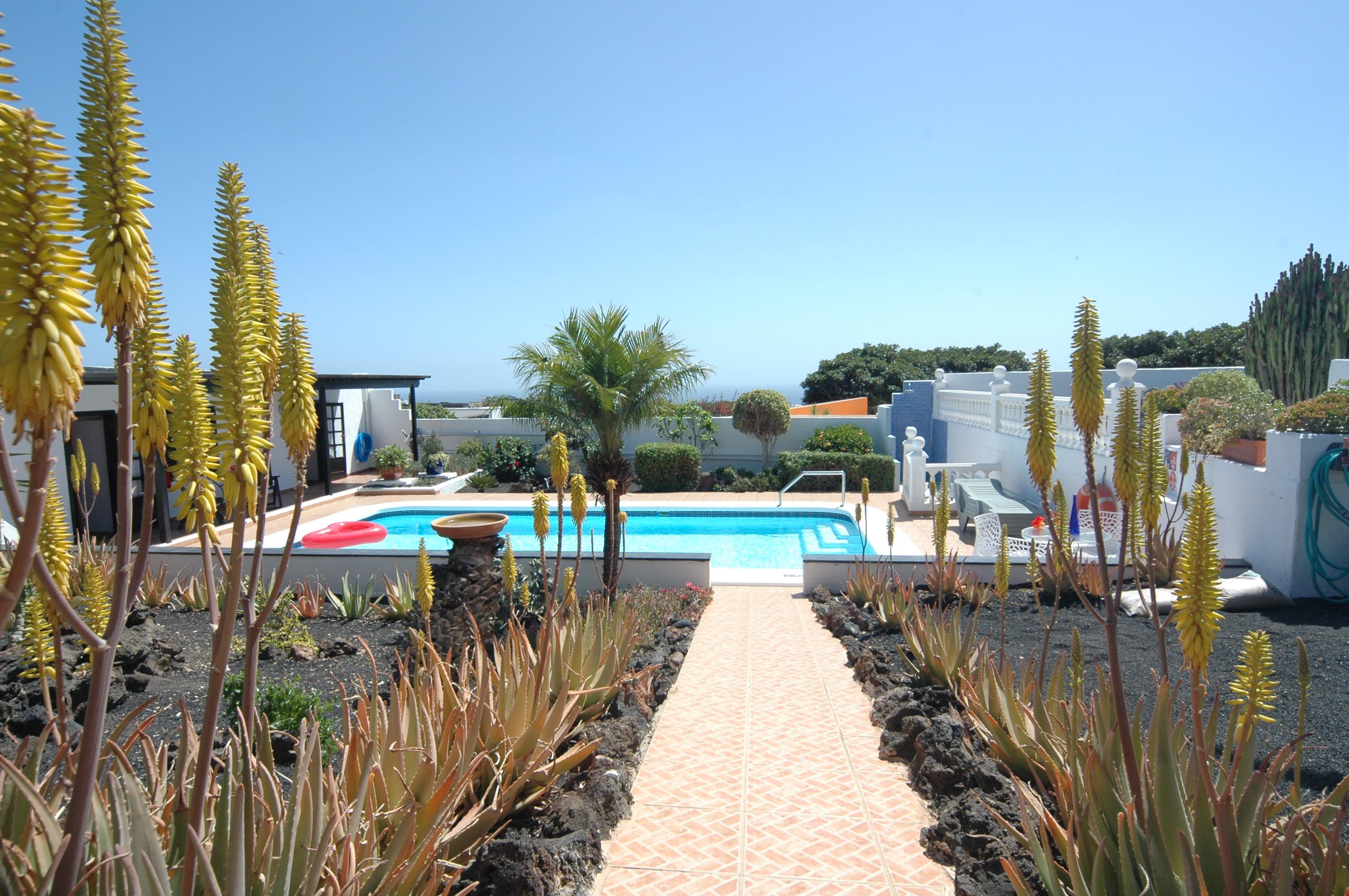LVC198622 Terrace and garden area