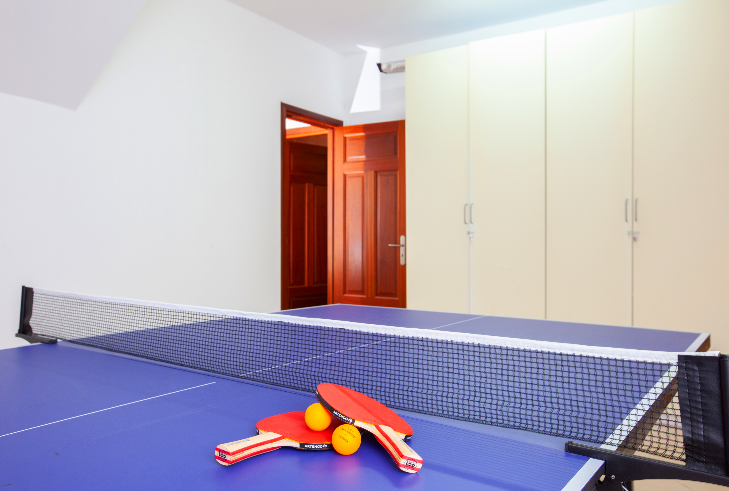 LVC311041 table tennis