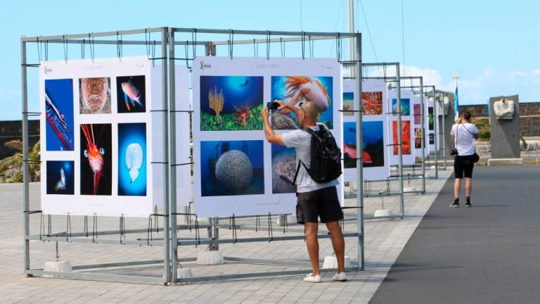 Exhibition of underwater photos in Arrecife