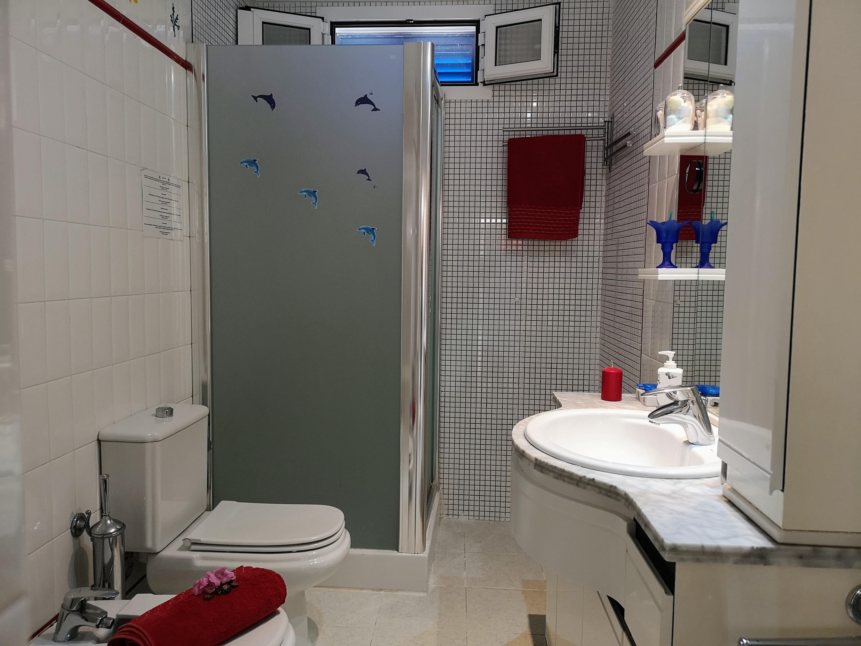 LVC32866 Shower room