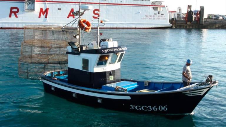Lanzarote Fish Sales Decline