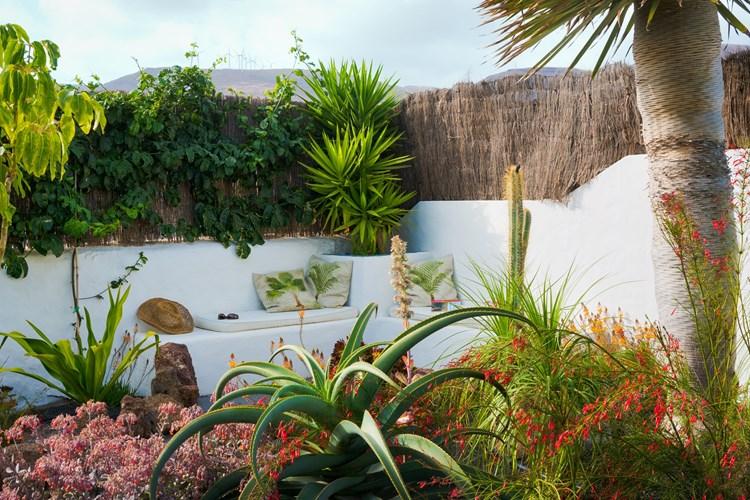 Apartment LVC274510 - beautiful garden apartment to rent