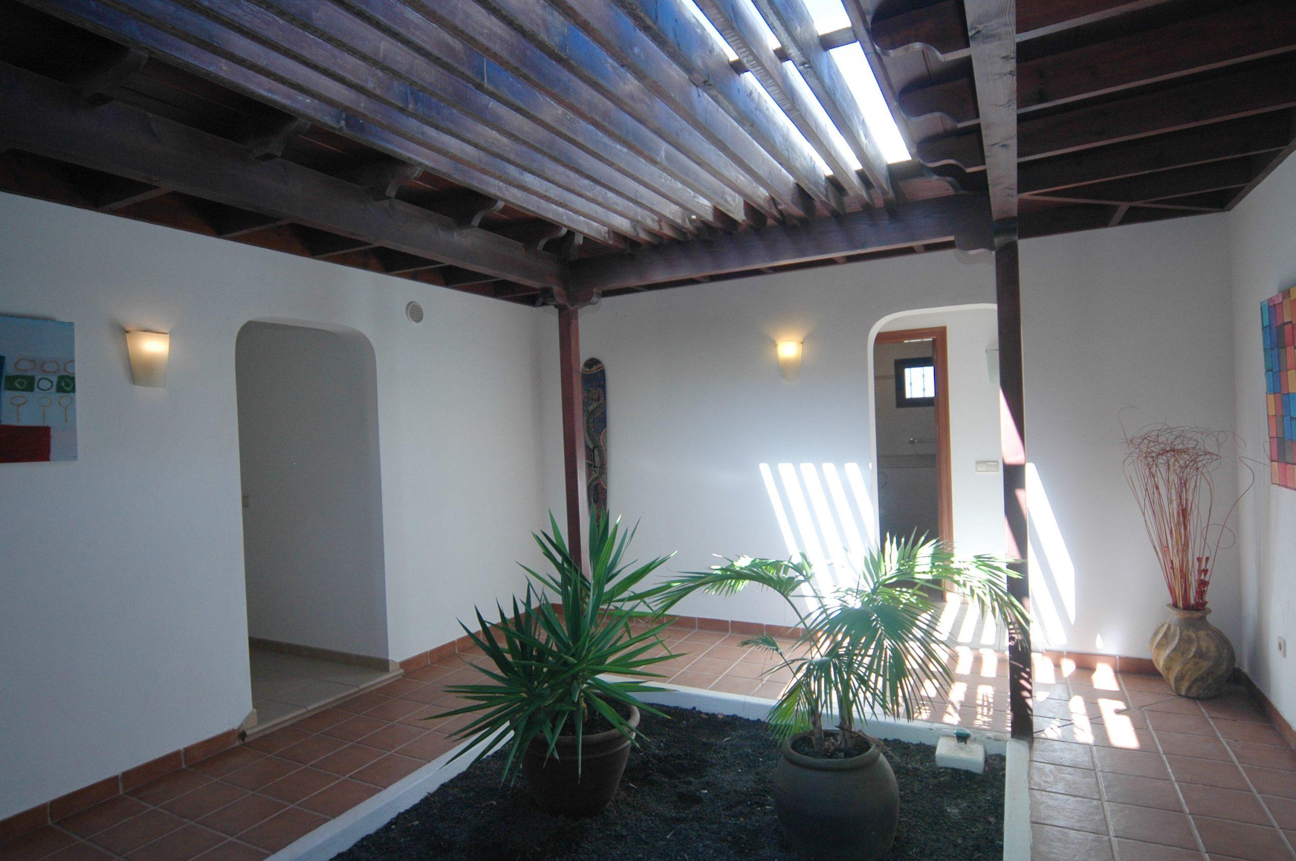 LVC200828 Interior garden