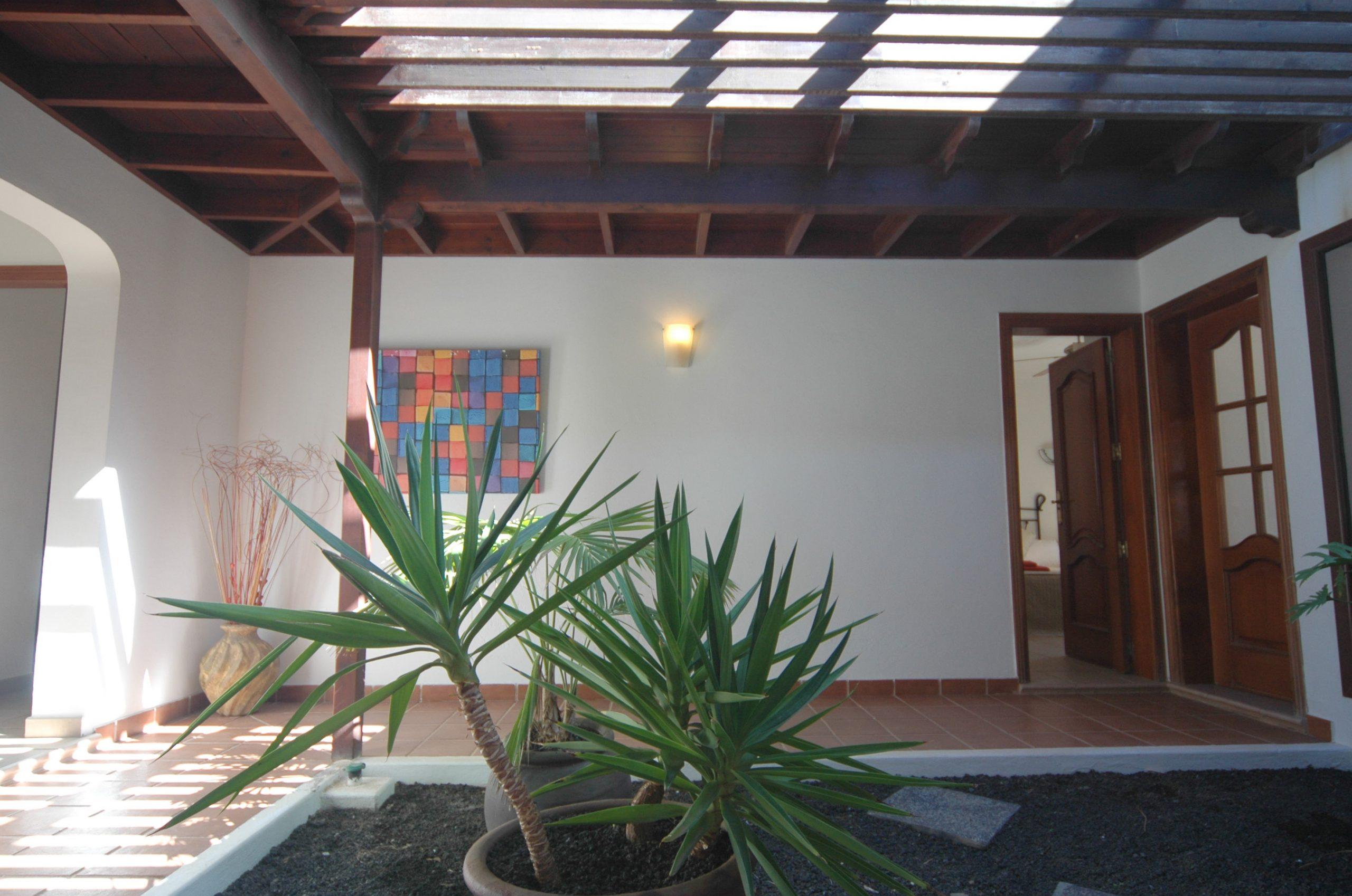 LVC200828 Stylish interior garden