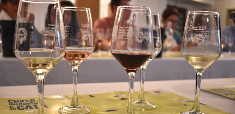 Wine is a Fast Growing Sector in Lanzarote