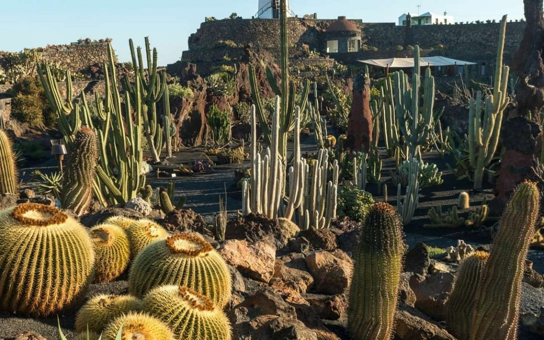 Lanzarote Features in Great Gardens of the World