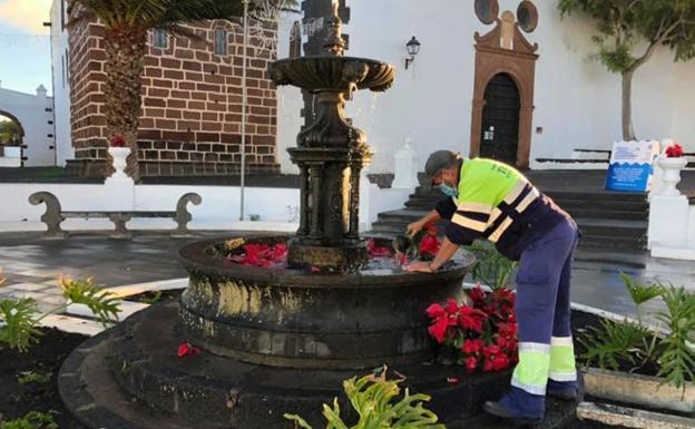 Lanzarote Ablaze With Ponsettia