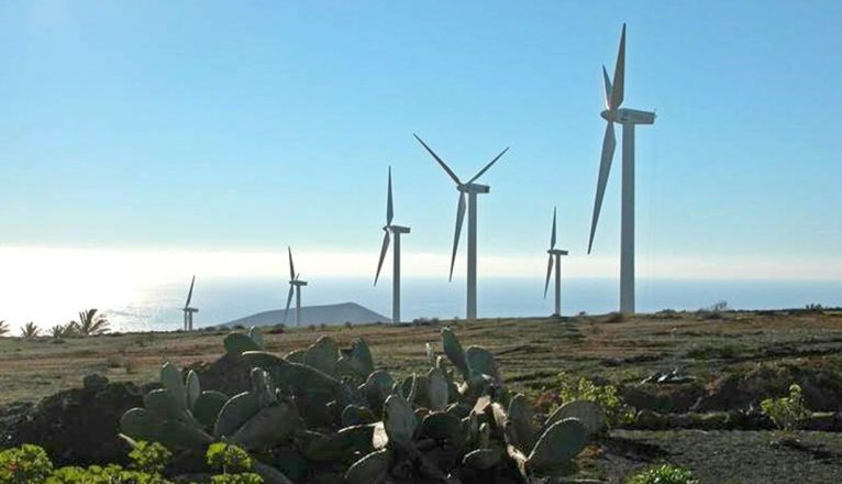 Wind farm produces energy in 2020